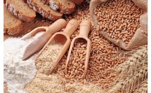 digestive-system-and-whole-grains